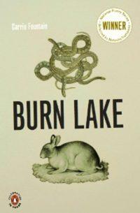 Burn Lake Carrie Fountain
